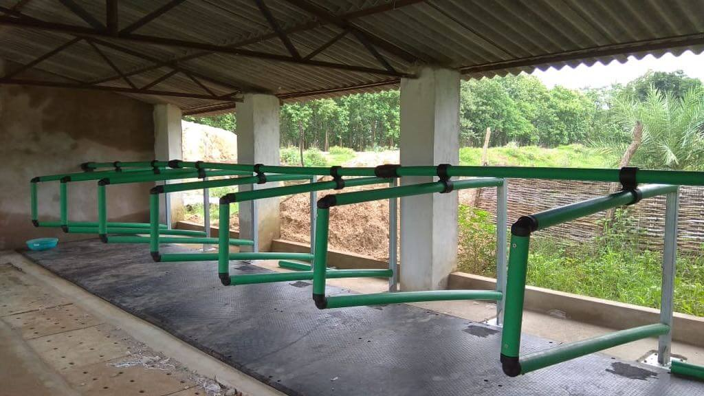 Cow Cubicles And Cow Stalls Suppliers