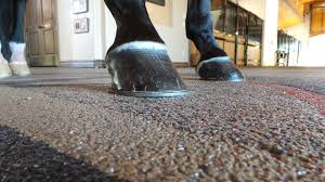 Equestrian Flooring in Gold Coast